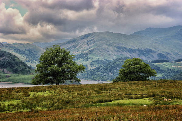 English Countryside Photograph - The Cumbrian Hills by Martin Newman
