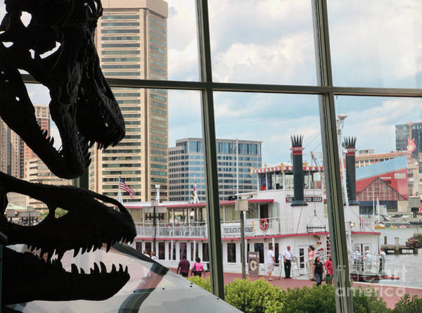 Photograph - The Dinosaurs That Ate Baltimore by William Kuta