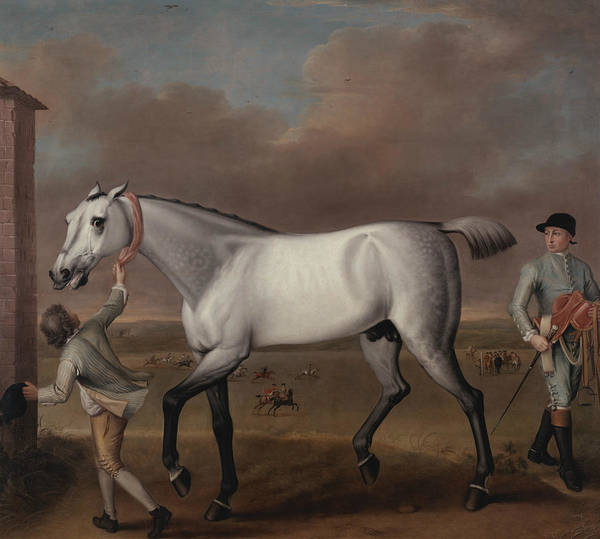 Victorious Painting - The Duke Of Hamilton's Grey Racehorse, Victorious, At Newmarket by John Wootton