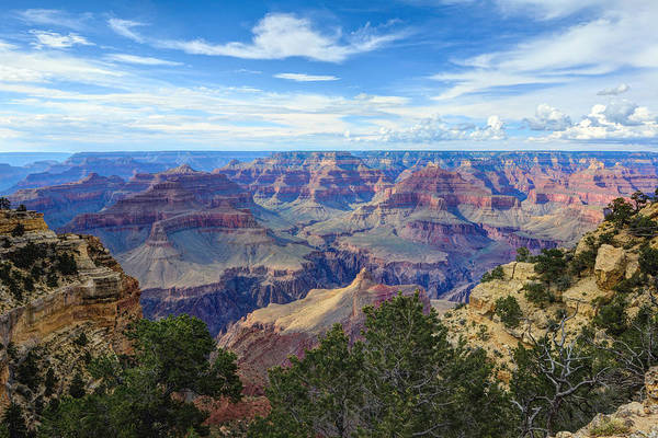 Photograph - The Grand Canyon by Mark Whitt