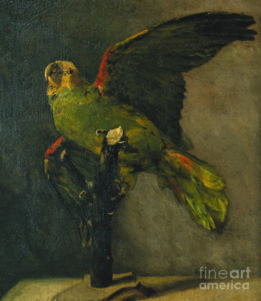 Wall Art - Painting - The Green Parrot by Vincent Van Gogh