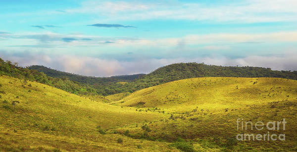 Srilanka Wall Art - Photograph - The Horton Plains by MotHaiBaPhoto Prints