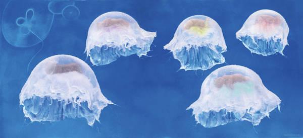Wall Art - Photograph - The Jellyfish Nursery by Anne Geddes