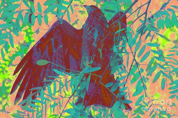 Behaviour Digital Art - The  Kite by Morris Keyonzo