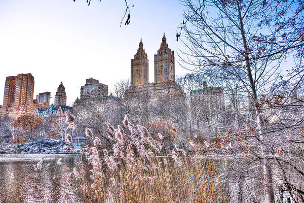 Wall Art - Photograph - The Lake At Central Park by Randy Aveille