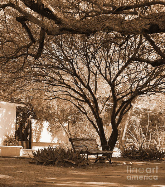 Photograph - The Lonely Bench by Donna Greene