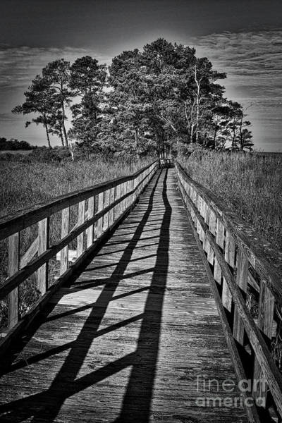 Wall Art - Photograph - The Long Walk by Skip Willits