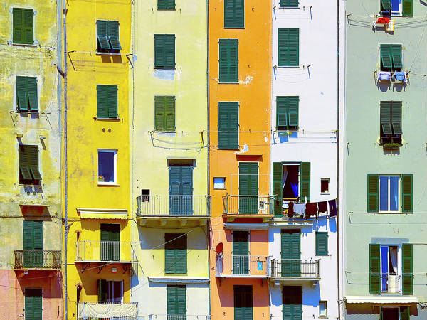 Photograph - The Neighborhood by Dominic Piperata