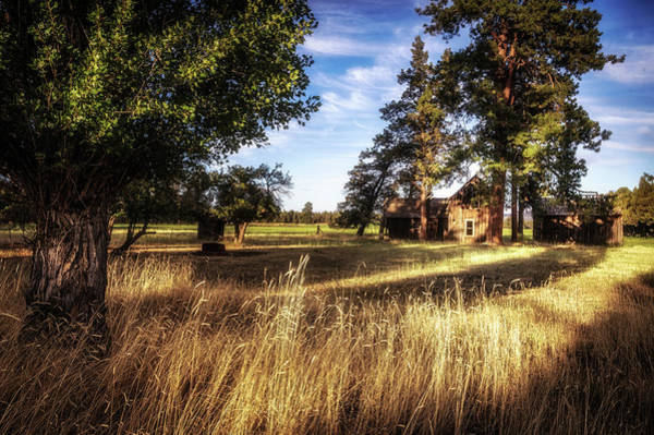 Wall Art - Photograph - The Old Homestead by Cat Connor
