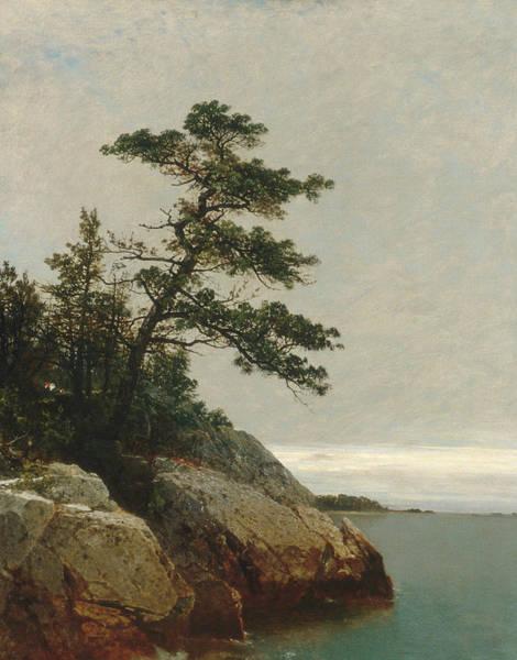 Wall Art - Painting - The Old Pine Darien Connecticut by John Frederick Kensett