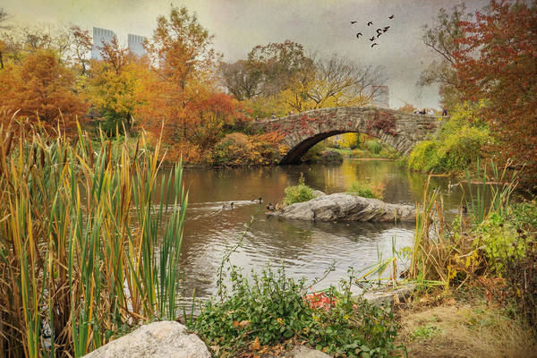 Wall Art - Photograph - The Pond by June Marie Sobrito