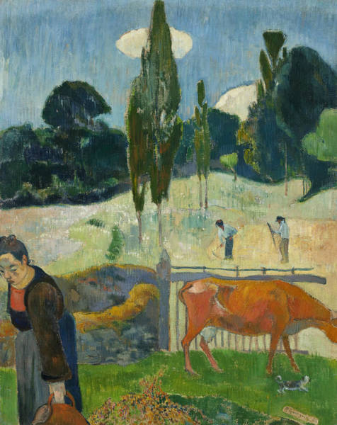 Painting - The Red Cow by Paul Gauguin