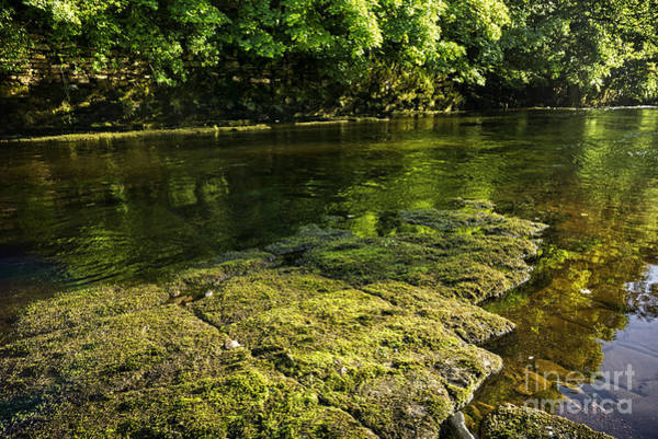 Wall Art - Photograph - The River Swale by Smart Aviation
