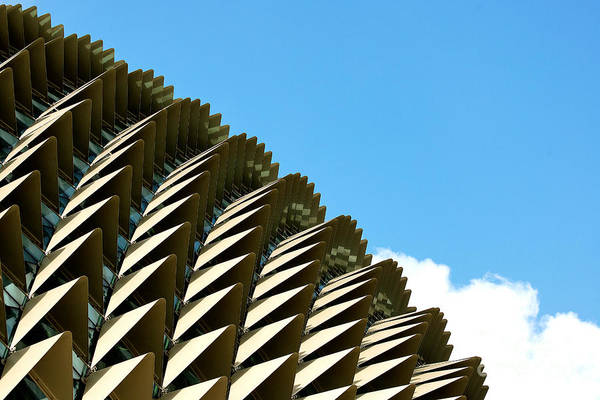 Photograph - The Roof  by Yew Kwang