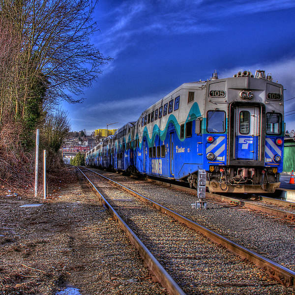 Photograph - The Sounder by David Patterson