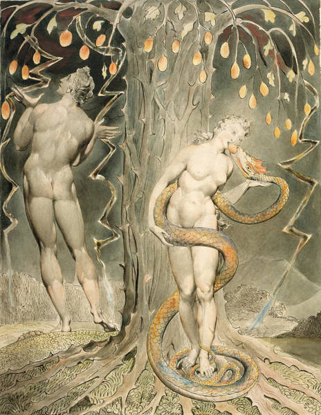 William Blake Drawing - The Temptation And Fall Of Eve by William Blake