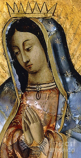 Latina Painting - The Virgin Of The Guadaloupe by Mexican School