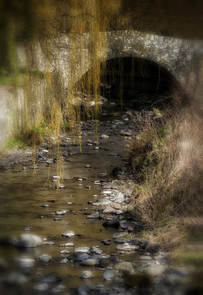 Photograph - The Wee Bridge by Jeremy Lavender Photography