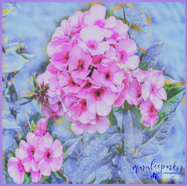 Digital Art - Thinking Of Spring by MaryLee Parker