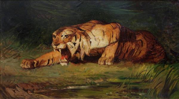 Wall Art - Painting - Tiger by Gustave Surand