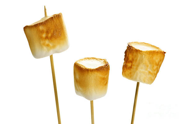 Wall Art - Photograph - Toasted Marshmallows by Elena Elisseeva