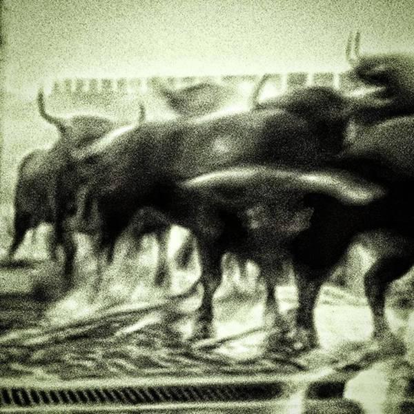 Run Photograph - Today's From-the-sofa by Rafa Rivas