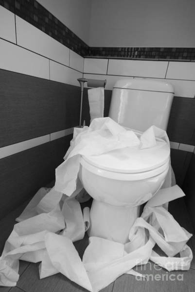 Toilet Paper Photograph - Toilet Paper Strewn In A Bathroom by Marlene Ford