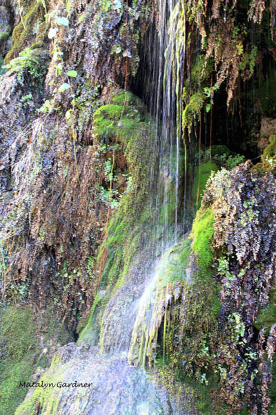 Photograph - Tonto Waterfall Cave by Matalyn Gardner