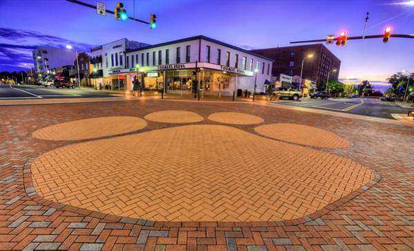 Toomer Wall Art - Photograph - Toomer's Corner by JC Findley
