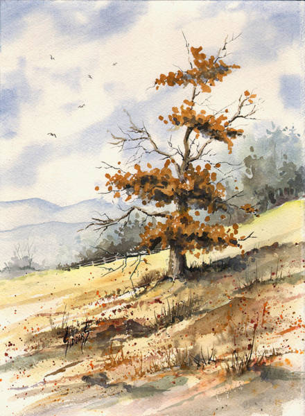Painting - Tree On A Hillside by Sam Sidders