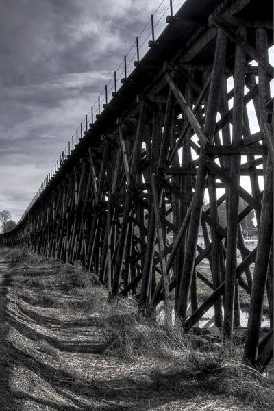 Photograph - Tressel From The East by David Patterson