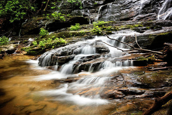 Photograph - Tripping Over The Rocks by Debra and Dave Vanderlaan