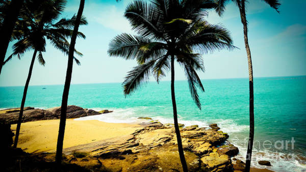Photograph - Tropical Landscape With Palm Trees And Ocean by Raimond Klavins