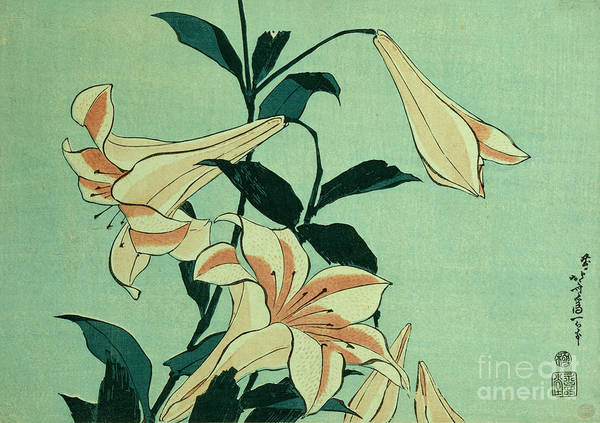 Wall Art - Painting - Trumpet Lilies by Hokusai