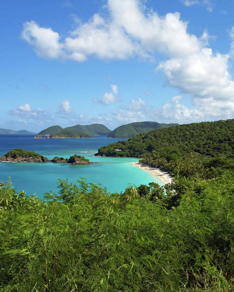 Photograph - Trunk Bay 2 by Pauline Walsh Jacobson