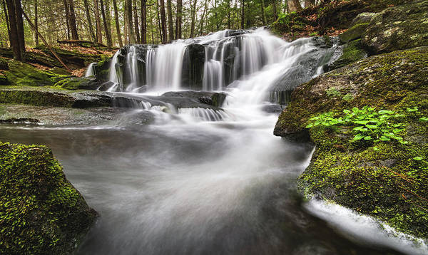 Photograph - Tucker Brook Falls by Robert Clifford