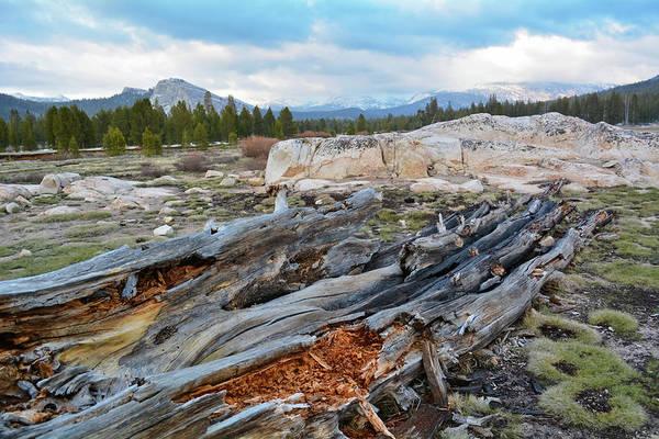 Photograph - Yosemite Tuolumne Meadows by Kyle Hanson