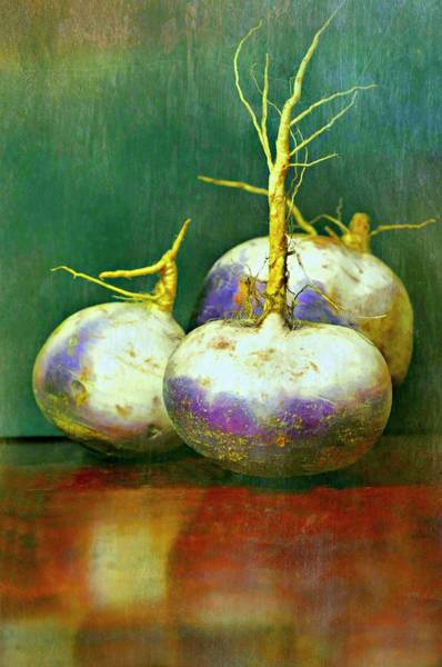 Wall Art - Photograph - Three Turnips by Diana Angstadt