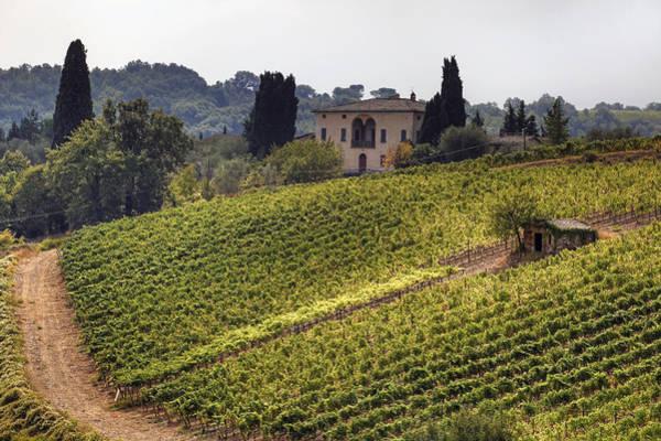 Tuscany Vineyards Wall Art - Photograph - Tuscany by Joana Kruse