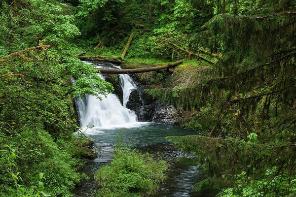 Photograph - Twin Falls by Robert Potts
