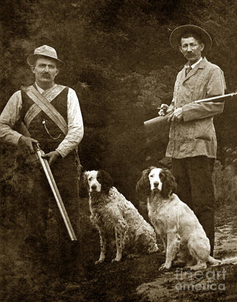 Photograph - Two Hunter With Shotguns And Bird Dogs Circa 1900 by California Views Archives Mr Pat Hathaway Archives