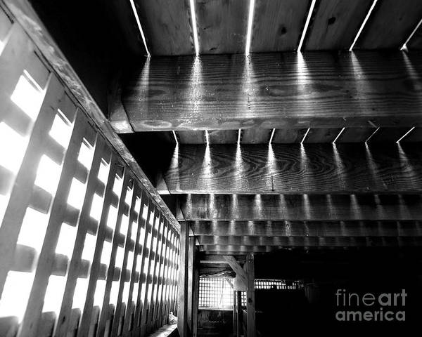 Wall Art - Photograph - Under Deck Theatre by Aneta  Berghane
