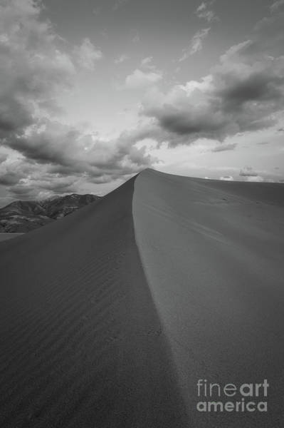 Wall Art - Photograph - Untouched Sand by Michael Ver Sprill