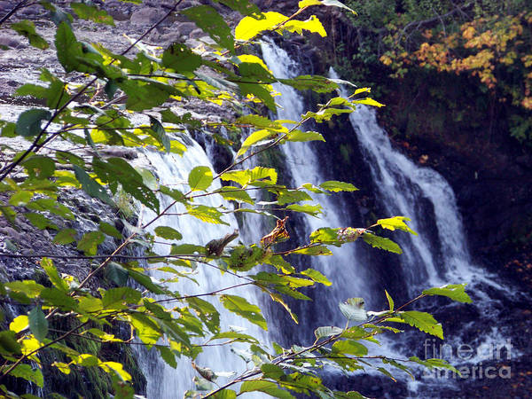 Photograph - Upper Rock Creek Falls by Charles Robinson