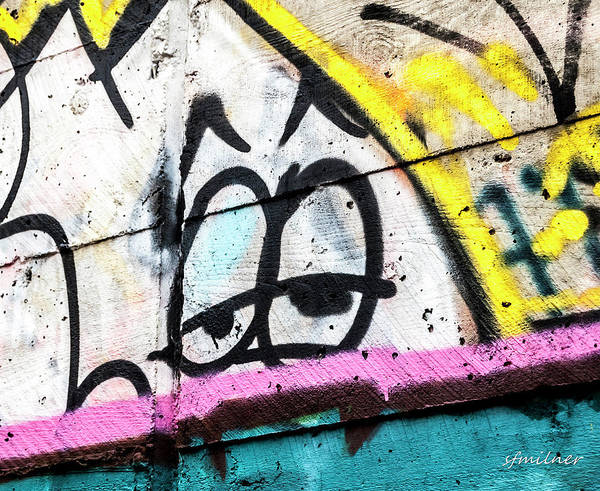 Photograph - Urban Expression by Steven Milner