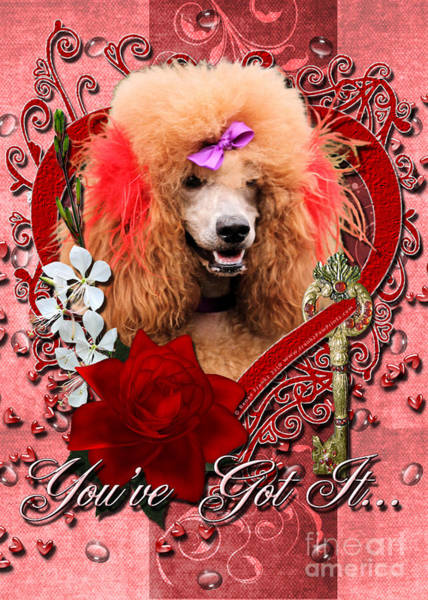 Poodle Digital Art - Valentines - Key To My Heart Poodle by Renae Crevalle