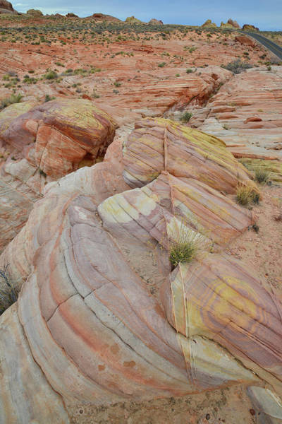 Photograph - Valley Of Fire Color Palette  by Ray Mathis