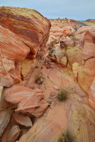 Photograph - Valley Of Fire Colorful Slot Canyon by Ray Mathis
