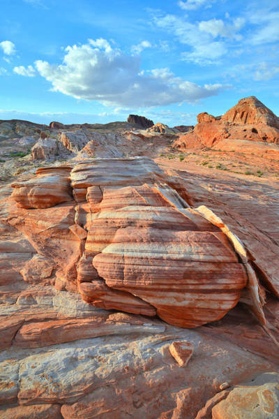 Photograph - Valley Of Fire State Park by Ray Mathis
