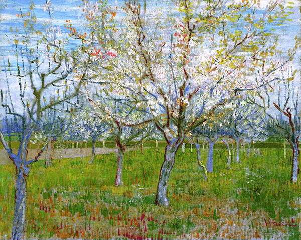 Wall Art - Painting - Van Gogh The Pink Orchard by Vincent van Gogh